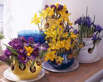 Crocus pots with Crocus vernus and Iris reticulata (Netziris)