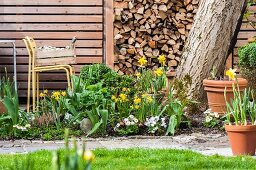Bed of flowering spring plants in front of stacked firewood