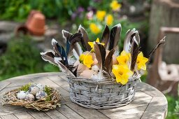 Basket of eggs, feathers and yellow narcissus next to Easter nest of quail eggs on garden table