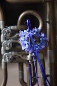 Wreath of hyacinth florets with blue ribbon hung on tuba