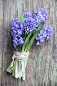 Bouquet of blue hyacinths tied with raffia
