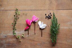 Muehlenbeckia, Cyclamen, juniper berries and juniper sprig