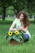 Young woman with basket of sunflowers and cornflowers on lawn