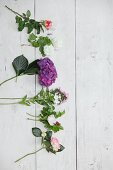 Cut summer flowers on white wooden boards