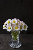 Posy of daisies in vintage-style glass vase