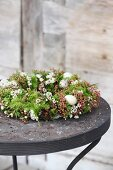 Wreath decorate with Chamelaucium and eggs on black garden table