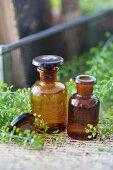Hirtentäschelkraut und braune Apothekerflaschen