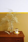 Dried asparagus fern in glass bottle against two-tone wall