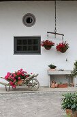 Flowers in old wheelbarrow and hanging baskets suspended from ox yoke