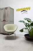 Gelbe Zickzack-Wandgarderobe neben grauem Vintage Schrank, Retro-Polstersessel und großblättrige Grünpflanze