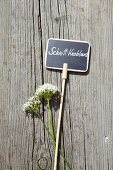 Garlic flowers and plant label on weathered wood