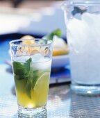 Erfrischungsgetränk mit Limette und Minze