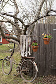 Potted plants hung from tree and vintage bicycle in garden