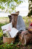 Basket and plates for autumn picnic on tree stump seats