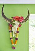 Büffelschädel an grüner Wand, mit indischen Kunstblumen dekoriert
