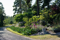Herbaceous borders lining curved drive