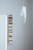 Delicate feathered lamp next to vertical bookshelf