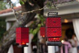 Red lanterns hung in garden