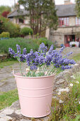 Artificial lavender in pink metal bucket