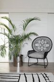 Black classic wire armchair next to potted palm tree