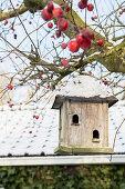 Verschneites Vogelhäuschen hängt im Baum mit roten Zieräpfeln