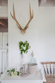 Antlers on wall above bottle with collar made from corrugated cardboard