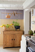 Hanging rack above wooden cabinet in country-house kitchen
