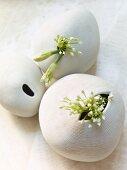 Garlic flowers in ceramic vases