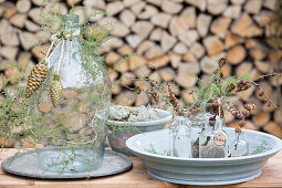 Sprigs of juniper and cones arranged around a demijohn and larch sprigs in small bottles