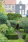 Green back garden in city