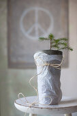 Tiny potted fir tree wrapped in tissue paper
