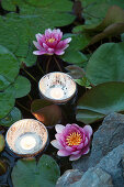 Tealights floating in bowls in lily pond