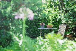 Blick auf einen Sitzplatz im sommerlichen Naturgarten