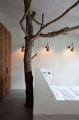 Tree trunk with branches behind bed in bedroom with partition wall