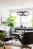 Leather furniture and houseplants in retro-style living room
