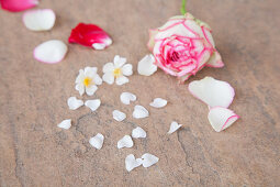 Petals on stone surface
