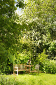 Wooden bench, table and folding chair in garden in early summer