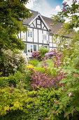 Blick durch Gartensträucher auf Fachwerkhausfassade