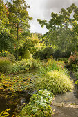 Garden pond surrounded by perennials and grasses in autumn garden (Les Jardin de Castillon, France)
