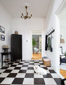 Dog on chequered foyer floor