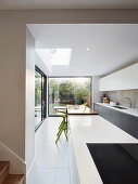 Long open-plan kitchen with glass walls leading into garden
