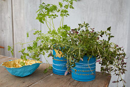 Papier-mâché bowls and herbs in decorated tin cans