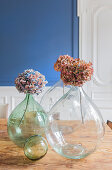 Dried hydrangea flowers in demijohn vases