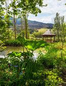 Blick über Pflanzen auf und Pavillon im Garten