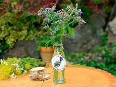 Borage in glass bottle with tag made from wooden disc