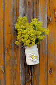 Posy of lady's mantle in milk jug on board wall