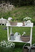 Baskets, water cans and plants on white potting table in garden