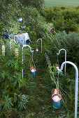 Candle lanterns hung from crooks lining overgrown garden path