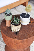 Tree stool with cactus