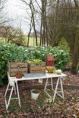 Miniature vegetable patch in wooden crates